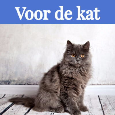 Voor de kat